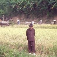 Phạm Duy về quê (2003?)