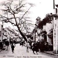 Phố Mã Mây - Rue Des Pavillons Noirs - circa 1920