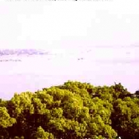 Sông Tiền Đường